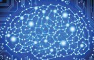 Booz Allen's Joachim Roski, Catherine Ordun: Agencies Need Actionable Data for AI Deployment