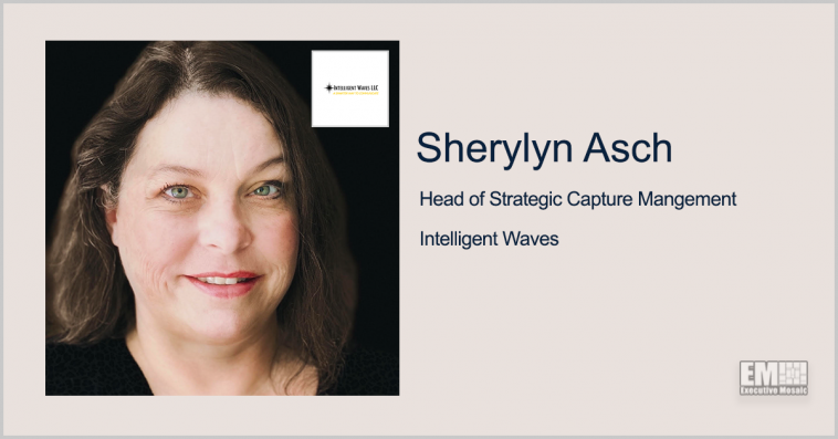 Sherylyn Asch to Head Strategic Capture Management at Intelligent Waves - top government contractors - best government contracting event