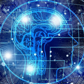 NSF to Establish More AI Research Institutes With Tech Industry Backing - top government contractors - best government contracting event