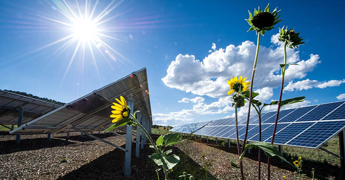 DOE Funds R&D Projects on Photovoltaic, Solar-Thermal Technologies